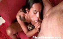 Busty Shemale Gives Hot Oral