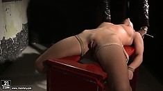 Nikky gets strapped down backward and has her nipples tweaked